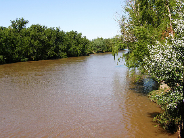Glyphosate is commonly found in rain and rivers in agricultural areas in the Mississippi River water
