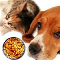 Pet Food Fall-Out Continues...